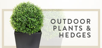 Outdoor Plants and Hedges