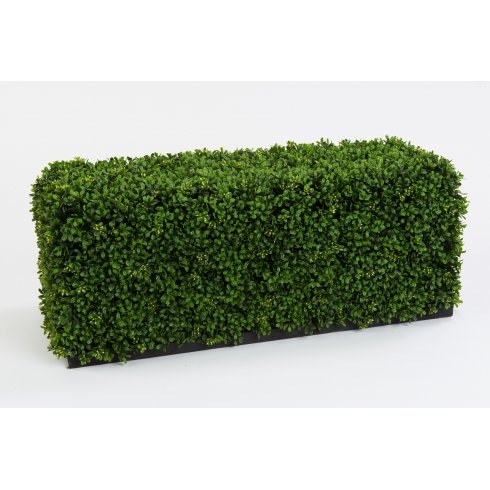 Artificial Boxwood Hedge on Plinth