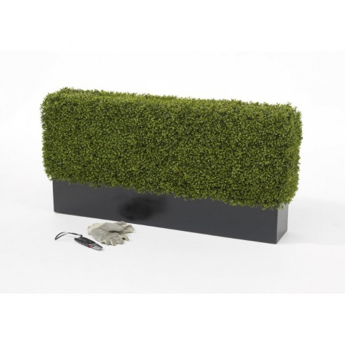 artificial bonsai trees uk with Artificial Boxwood Hedge Set In Fibreglass Trough P66 on Artificial Boxwood Hedge Set In Fibreglass Trough P66 also Ficus Benjamina Tree In Green Or Variegated Leaf P45 additionally VCK3066 A806386 likewise Aloe Vera 2ft 4 P33 likewise Gestalten Eigenen Steingarten.