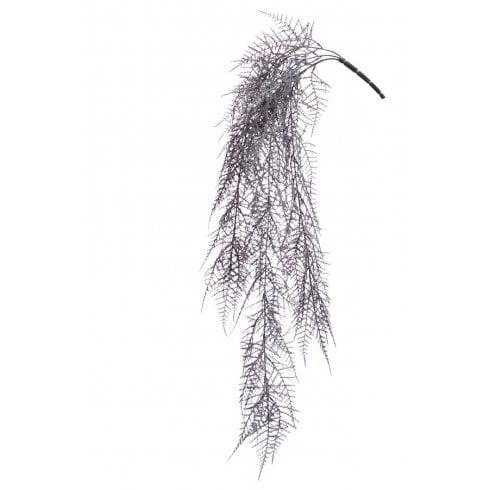 Asparagus Hanging Trail in Burgundy or Black