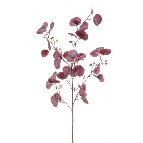 Burgundy Eucalyptus Spray
