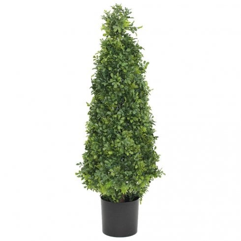 Buxus Tower
