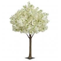Cream Blossom Ball Tree