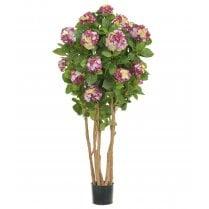 Dark Pink Hydrangea Tree