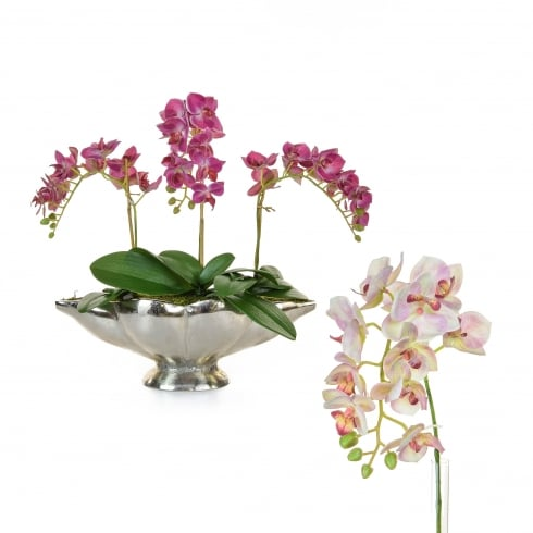 Deep or Pale Pink Orchid Arrangement in Silver Bowl