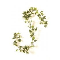 Green or Variegated English Ivy Garland