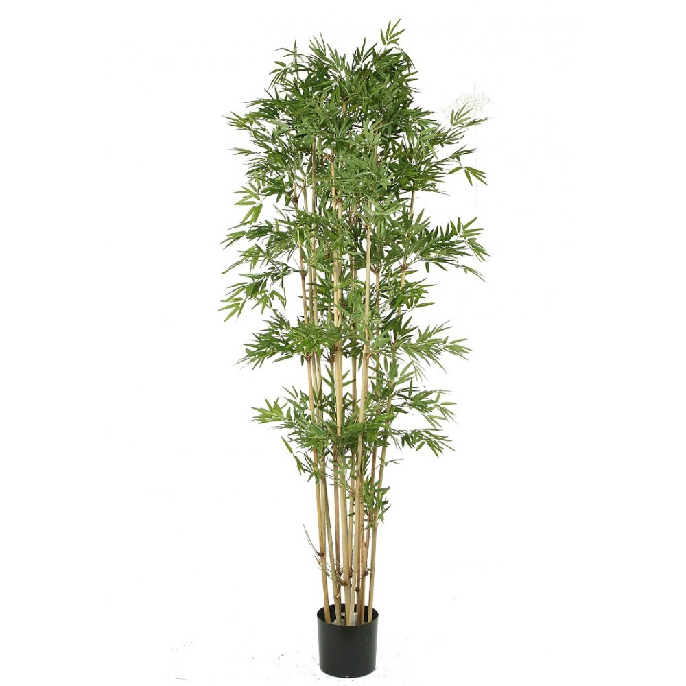 artificial bamboo  the replica japanese bamboo plant an oriental tree