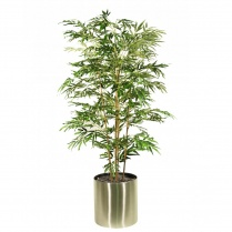 Japanese Bamboo set in a Stainless Steel Planter