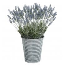 Lavender in Silver Metal Vase