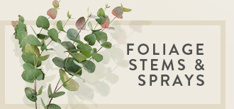 Foliage Stems & Sprays