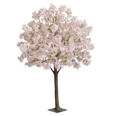 Pale Pink Blossom Ball Tree