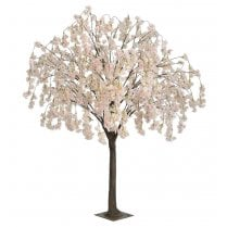 Pale Pink Trailing Blossom Tree
