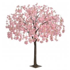 Pink, Pale Pink or Cream Trailing Blossom Tree