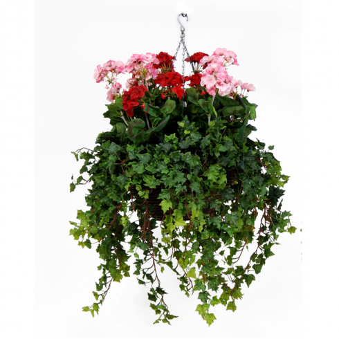 Pink & Red Geranium Hanging Basket
