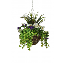 Purple & White Pansy Hanging Basket